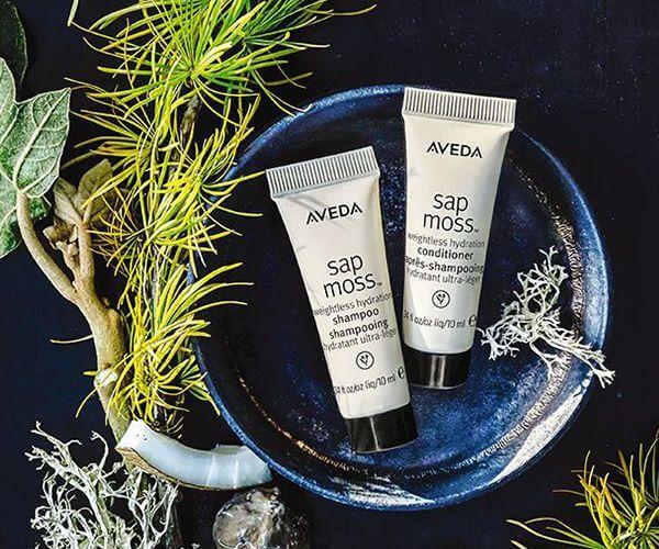 aveda shampoo and conditioner sample